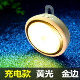 Human body sensing LED night light